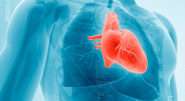 imagen de cardiología